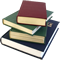Libro (Referencia dominicana)